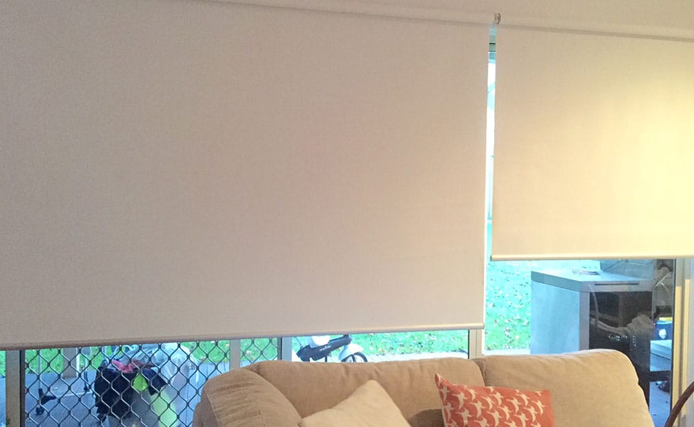 photo of white sunscreen roller blinds